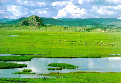 木兰草原风景区草原牧场