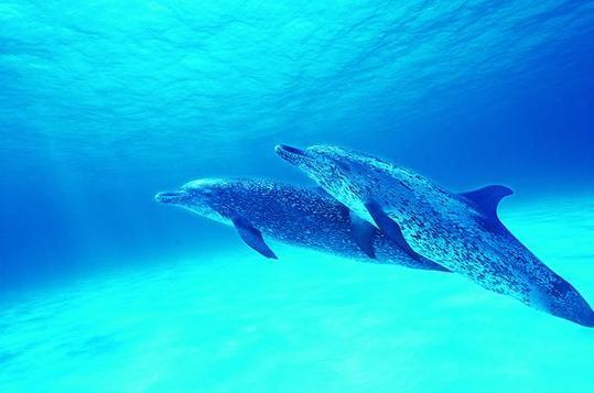新奥海底世界